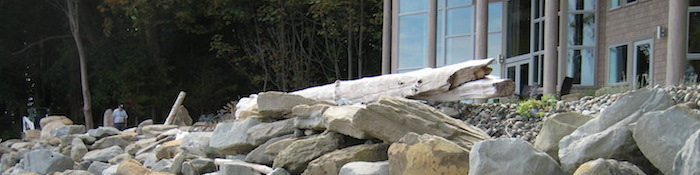 Rock Driftwood and Glass